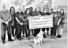 Toyota of Mount Pleasant sponsors CASA fundraisers
